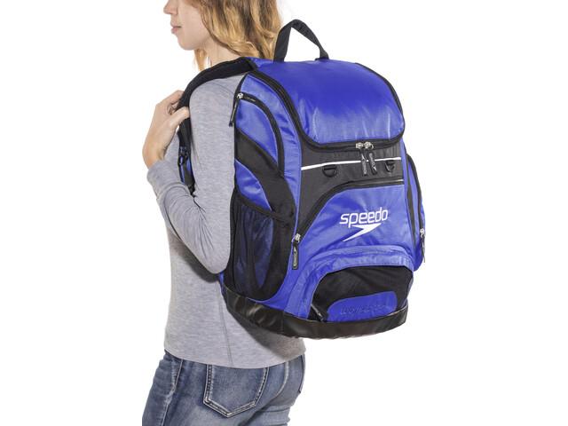 360389b578a0 speedo Teamster Backpack L, royal blue   Bikester.es